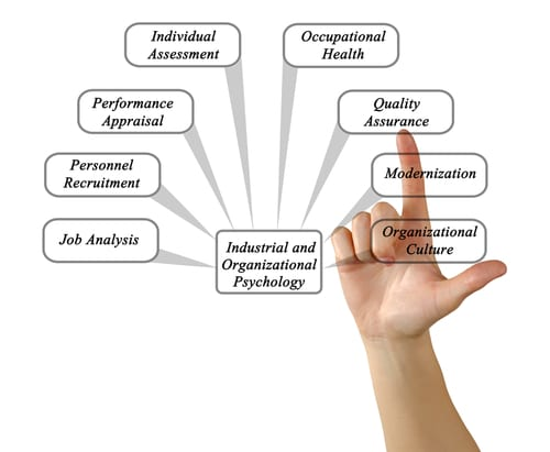 industrial organizational psychologists