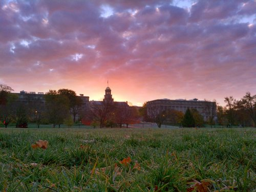 48. The University of Iowa - Iowa City, Iowa