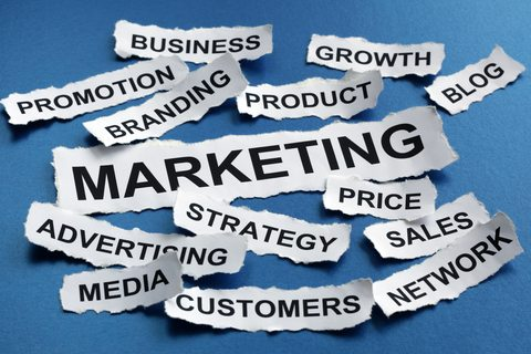 Advertising and Marketing best bachelor degrees