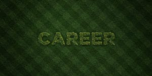 career in sustainability