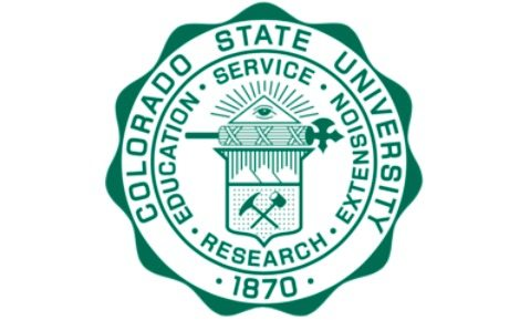 colorado state university application essay