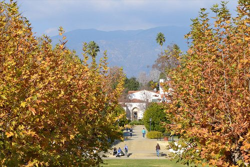 2. Scripps College – Claremont, California