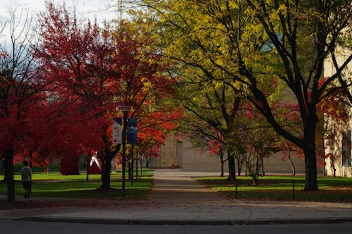 29. Indiana University Bloomington – Bloomington, Indiana