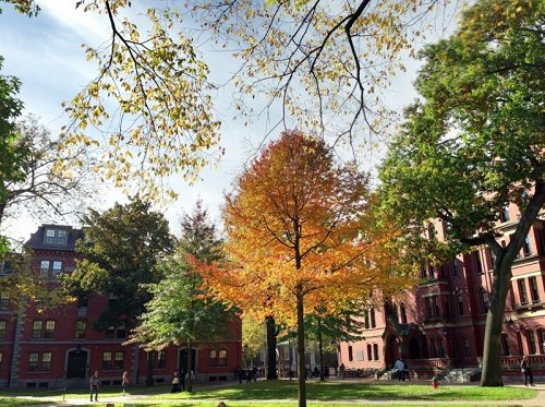 6. Harvard University – Cambridge, Massachusetts