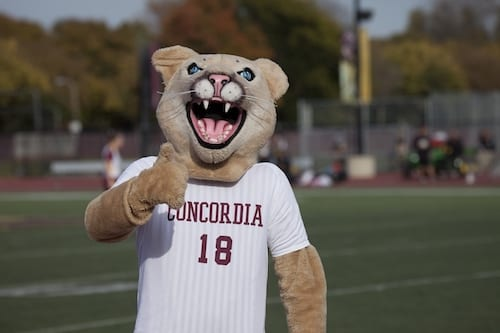 CONCORDIA UNIVERSITY- CHICAGO - fastest Online Degree Programs