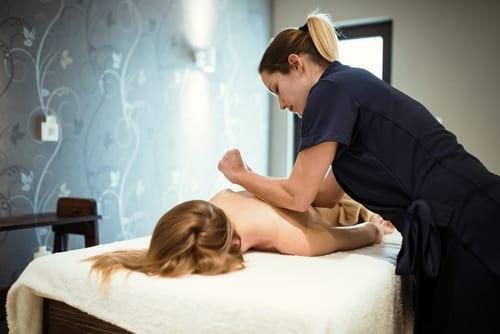 massage therapist degree