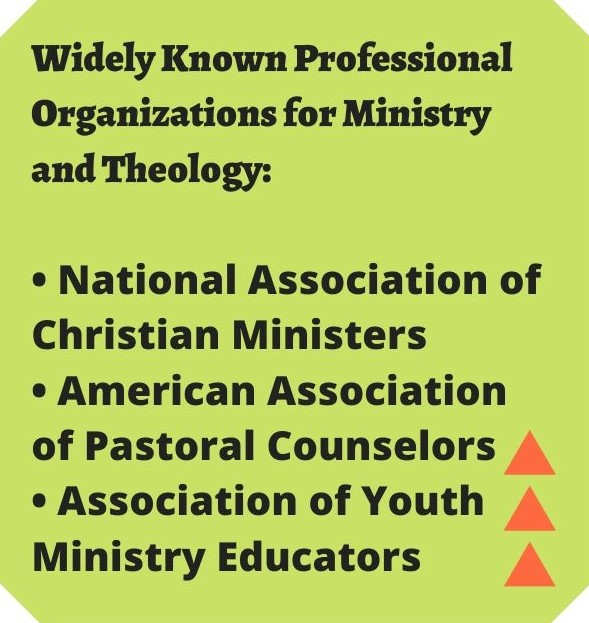 professional ministry organizations