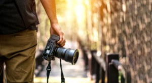 photography online courses programs
